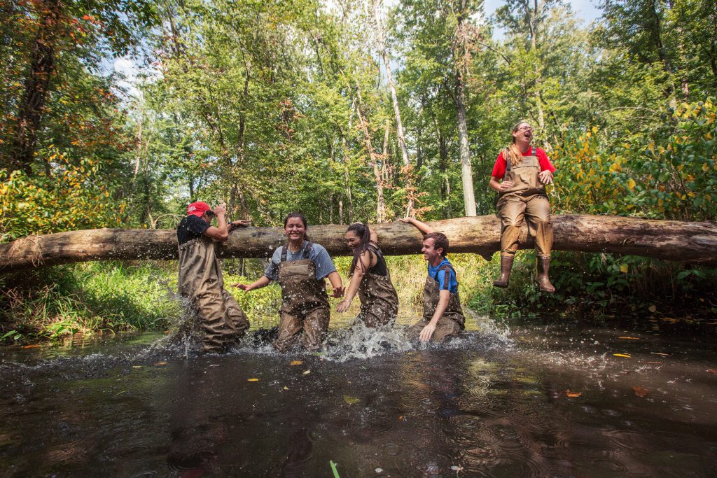 Students jumping off a log into a stream in outdoor ecology lab