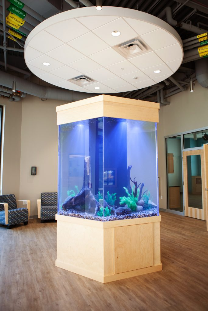 Science Center freestanding fish tank