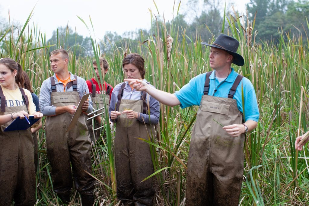 College for Environmental Science Dr. Nate Bosch in Wetlands